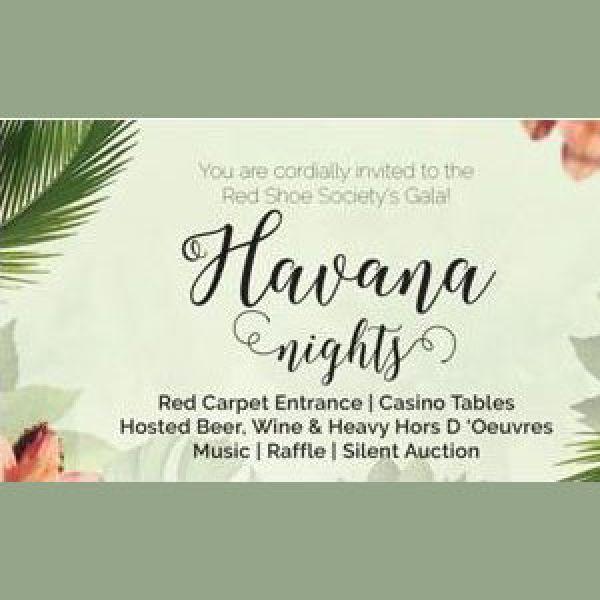 Ronald-mcdonald-house-havana-nights-2017